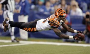 Cincinnati Bengals wide receiver Chad Ochocinco dives as he attempts to make a catch against the Indianapolis Colts in the second half of an NFL football game in Indianapolis, Sunday, Nov. 14, 2010. The pass was incomplete. The Colts won 23-17. (AP Photo/Michael Conroy)