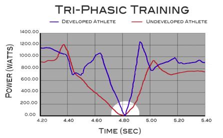 triphasic 2